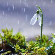 Achtung, Schnee! Hier wird es nochmal kalt und nass! (Foto)