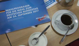 Die AfD hat ihr vorläufiges Wahlprogramm vorgestellt. (Foto)