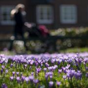 Bleibt der Frühling? So wird das Wetter diese Woche (Foto)