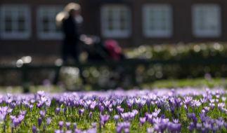 Der Frühling bleibt vorerst in Deutschland. (Foto)