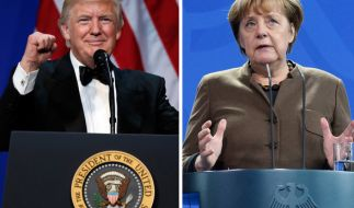 Bundeskanzlerin Angela Merkel und US-Präsident Donald Trump treffen erstmals in Washington aufeinander. (Foto)
