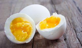 Heidegold ruft Eier wegen Salmonellen-Verdacht zurück. (Foto)