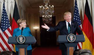 Haben Angela Merkel und Donald Trump wirklich nichts gemeinsam? (Foto)