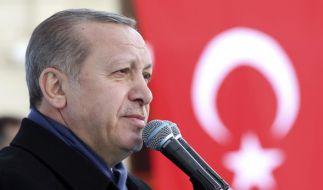 Erdogan fordert die europäischen Türken auf, fünf Kinder zu bekommen, um sich an der EU zu rächen. (Foto)