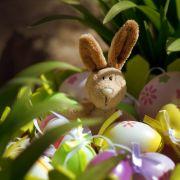 Kommt bald kein Osterhase mehr in die Kitas? (Foto)