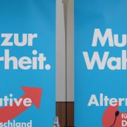 Mit gefälschten Unterschriften in den Landtag? (Foto)