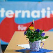 Verbal-Eklat im Wahlkampf - Politiker diskriminiert Homosexuelle (Foto)
