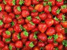 Erdbeeren aus Ägypten mit Norovirus verseucht