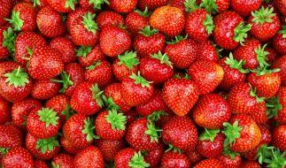 Sind Erdbeeren von Aldi wirklich so gefährlich? (Foto)