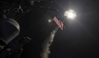 Die russische Politik hat den US-Angriff auf syrische Regierungstruppen in scharfen Worten verurteilt. (Foto)