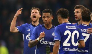 Bleibt Schalke 04 in der Europa League? (Foto)