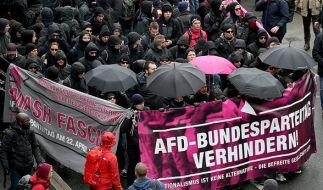 50.000 Demonstranten haben sich in Köln versammelt. (Foto)