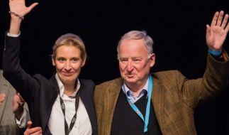 Alice Weidel und Alexander Gauland. (Foto)