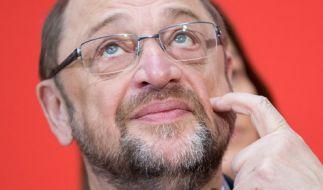 Wie vermögend ist Martin Schulz wirklich? (Foto)