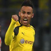 2:0 gegen Schalke: Niederlechner schießt Freiburg Richtung Europa (Foto)