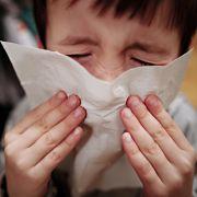 Rekordzahlen bei Grippe-Toten! So gefährlich ist die Influenza (Foto)