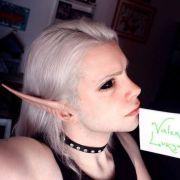 30.000 Euro - um auszusehen wie ein Elf! (Foto)