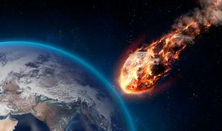 Der Mensch ist die herrschende Spezies auf der Erde. Etwa nur durch Zufall? (Foto)