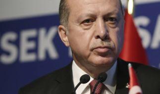 Erdogan will in Deutschland vor seinen Landsleuten sprechen. (Foto)
