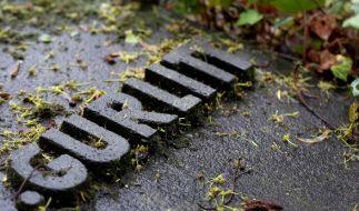 Das Grab von Hildebrand Gurlitt, dem Vater des verstorbenen Cornelius Gurlitt. (Foto)