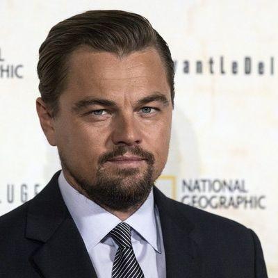 Leonardo DiCaprio soll sich DIESES heiße deutsche Model geangelt haben (Foto)