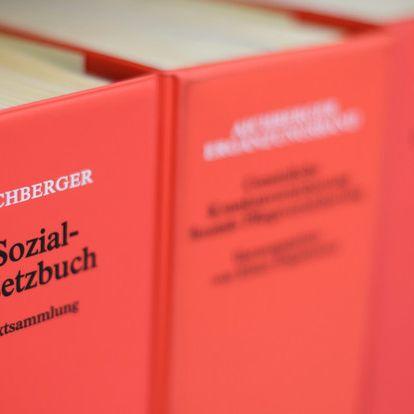 So viele Ausländer erhalten in Deutschland Hartz IV (Foto)
