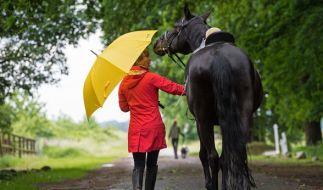 Unter einem Regenschirm führt eine Frau ihr Pferd am Pfingstsonntag zum Reitplatz in Quelkhorn (Niedersachsen). Das Wetter bleibt wechselhaft. (Foto)
