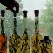 Mit diesen Tipps gelingt das Estragon-Rezept garantiert! (Foto)