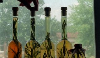 Vorzüglich macht sich der Estragon zu Fleisch und Fisch, verfeinert aber auch Öl für Salat-Dressings. (Foto)