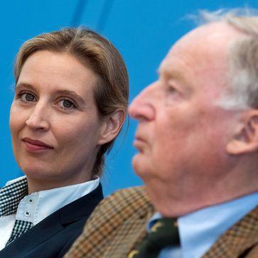 DAS ist das Programm der Alternative für Deutschland (Foto)