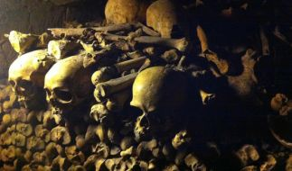 Schädel und Knochen liegen in den Katakomben von Paris. (Foto)