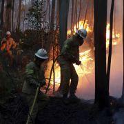 Feuerhölle! Waldbrand fordert 39 Todesopfer (Foto)