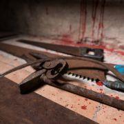 Mann wird gezwungen seine Hoden zu essen - und wird dann ermordet (Foto)