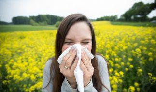 """Die Saison für Pollenallergiker hat noch lange kein Ende. Ein """"Wundermittel"""" soll nun die Symptome lindern. (Foto)"""
