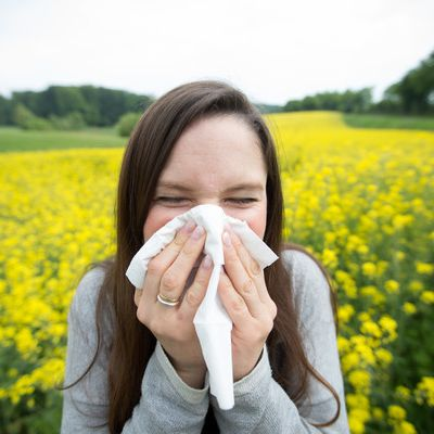 """Saufen gegen Pollenallergie! DIESES """"Wundermittel"""" soll helfen (Foto)"""