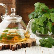 Zitronenmelisse enthält die ätherischen Öle Citral und Limonen, Tannine und Flavonoide. Als Tee hilft sie bei Verdauungsbeschwerden und wirkt beruhigend, krampflösend sowie als natürliches Antihistamin gegen Insektenstiche und Nesselausschlag.