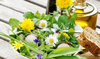 Superfoods kann man auch in Deutschland direkt von der Wiese pflücken. (Foto)