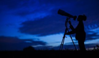 Die Perseiden sind am Mitte Juli am Juli-Himmel sichtbar. (Foto)