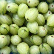 Mit diesen Tipps können Sie die Früchte haltbar machen (Foto)