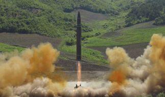 Ein Experte hegt Zweifel, dass Nordkorea über eigene Technik für Interkontinentalraketen verfügt. (Foto)