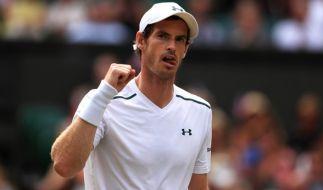 Der Brite Andy Murray steht gegen den US-Amerikaner Sam Querrey im Wimbledon-Halbfinale der Herren. (Foto)