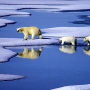 Abbruch von Eisbergen! Europa versinkt im Schmelzwasser (Foto)