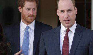 Die Prinzen Harry und William wollen die Erinnerung an ihre Mutter aufrechterhalten. (Foto)