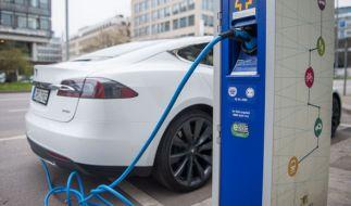 Sind Elektroautos die Zukunft der Automobilindustrie? (Foto)