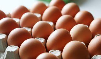 Von außen nur schwer zu erkennen: Aber kein Ei gleicht dem anderen. (Foto)