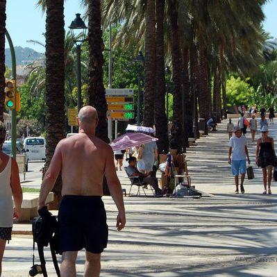 Hitzetote auf Mallorca! Wann kommt endlich Abkühlung? (Foto)