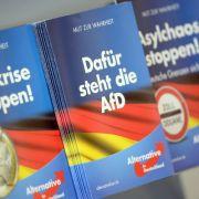 Das ist das Wahlprogramm der AfD (Foto)
