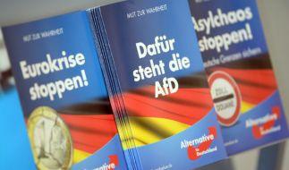 Die Alternative für Deutschland hat zur Bundestagswahl 2017 ein 73-seitiges Wahlprogramm vorgelegt. (Foto)