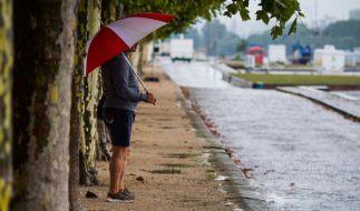 Ein Mann steht mit einem Regenschirm in der Hand unter Platanen am Rhein in Mainz. (Foto)