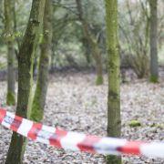 Unter Statue begraben! Fünfjähriger stirbt bei tragischem Unfall (Foto)